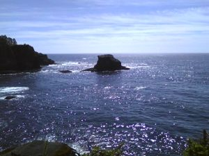 Pacific Ocean beyond seastacks from Cape Flattery lookout