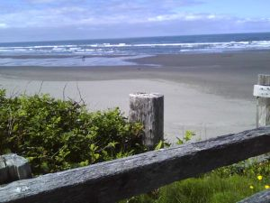 Kalaloch Beach from access trail