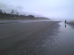 Kalaloch Beach in the rain
