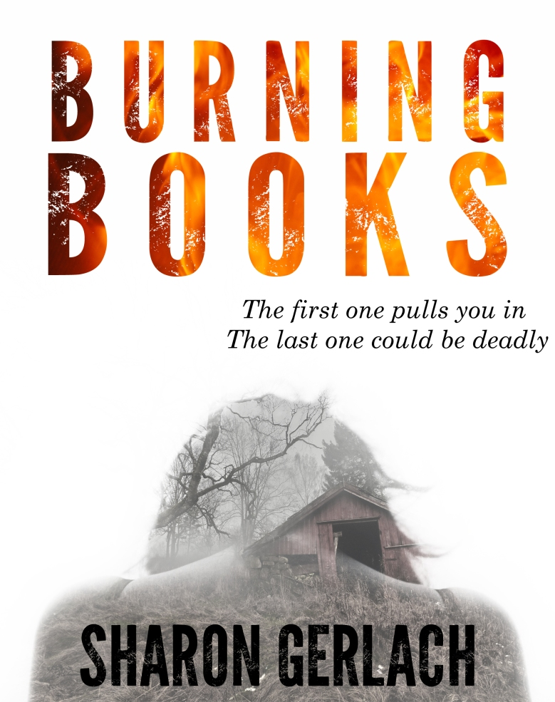 Burning Books cover