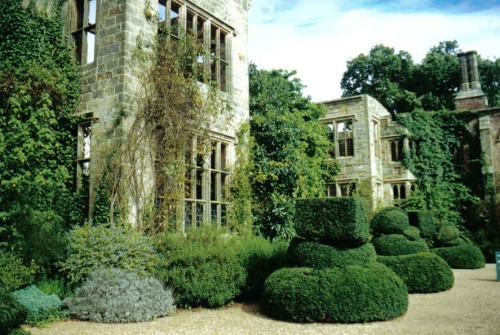 stone mansion in ruins, ivy climbing wall, thick shrubs